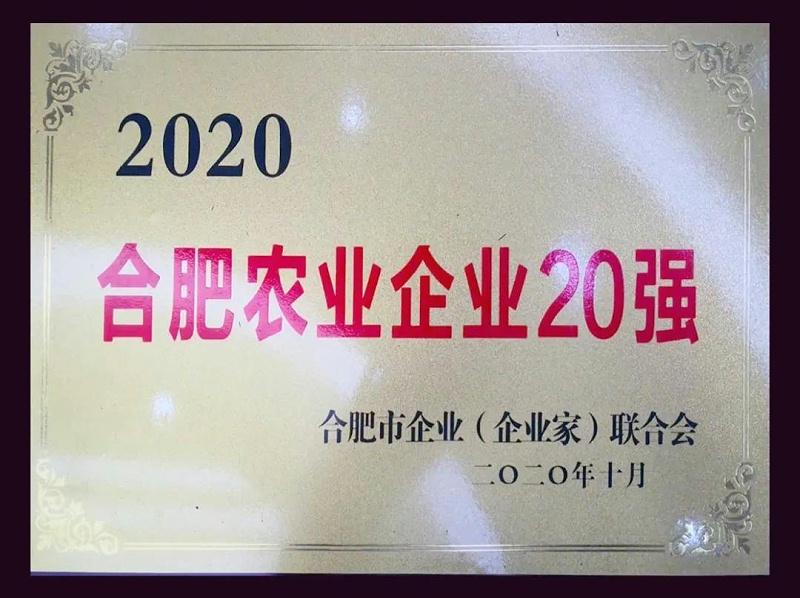 富煌三珍入选2020年合肥市农业企业20强