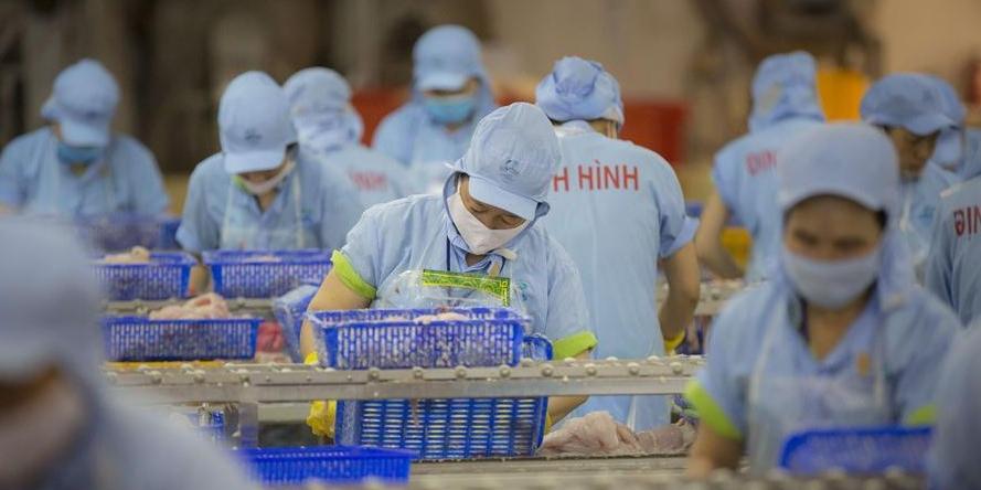 越南巴沙鱼价格持续上涨餐饮企业如何应对