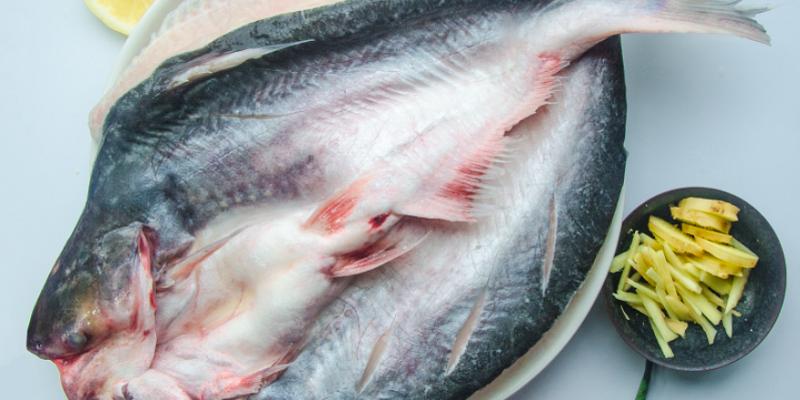 是什么支撑着烤鱼单品持续火爆?