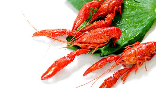整肢辣粉虾
