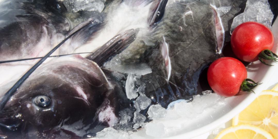 品尝鮰鱼的好时节,你知道吗?