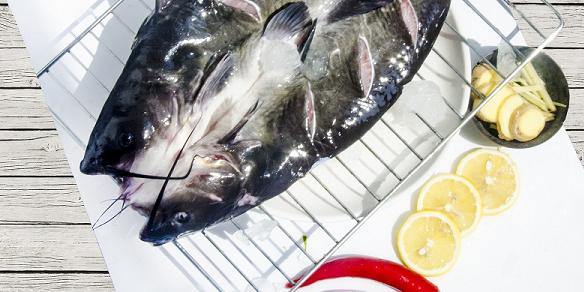 疫情冲击后,烤鱼餐企选好鮰鱼厂家才能绝地逢生