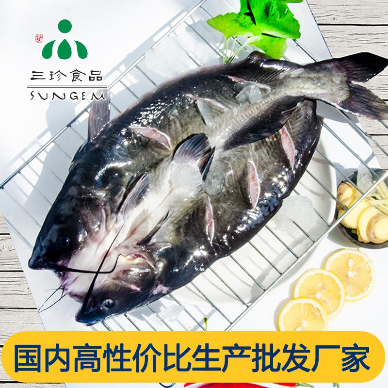 鮰鱼-三珍食品官网