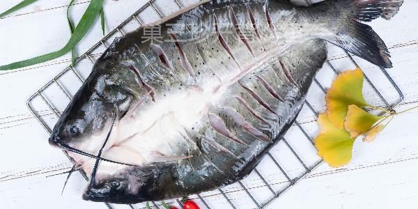 后疫情时代,开背鱼的食材优势尤为突出,这是为什么?