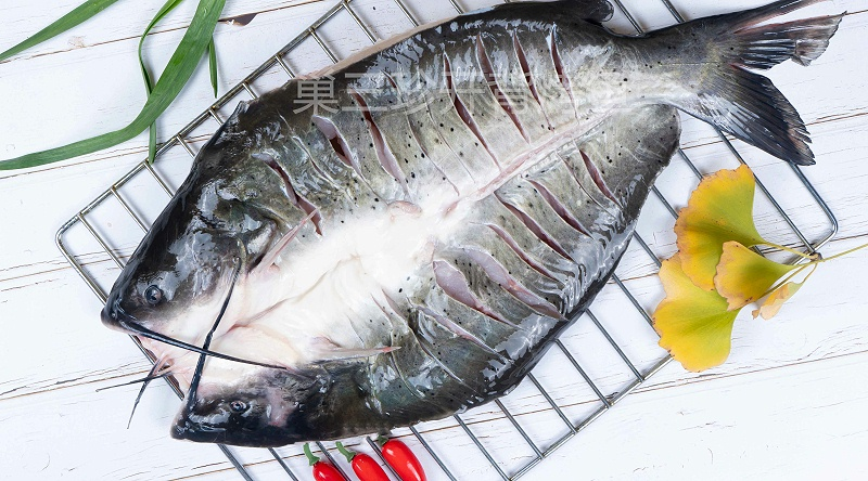 冷冻鮰鱼-三珍食品官网